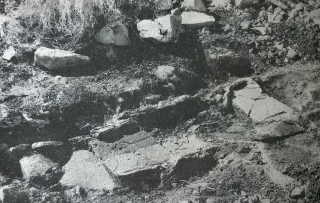 Lacus Timavi; Monfalcone