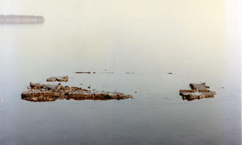 Il senso della scoperta – secondo appuntamento | Alle origini del Museo di Marano. Le scoperte archeologiche del gruppo Archeosub [sabato 7 aprile]