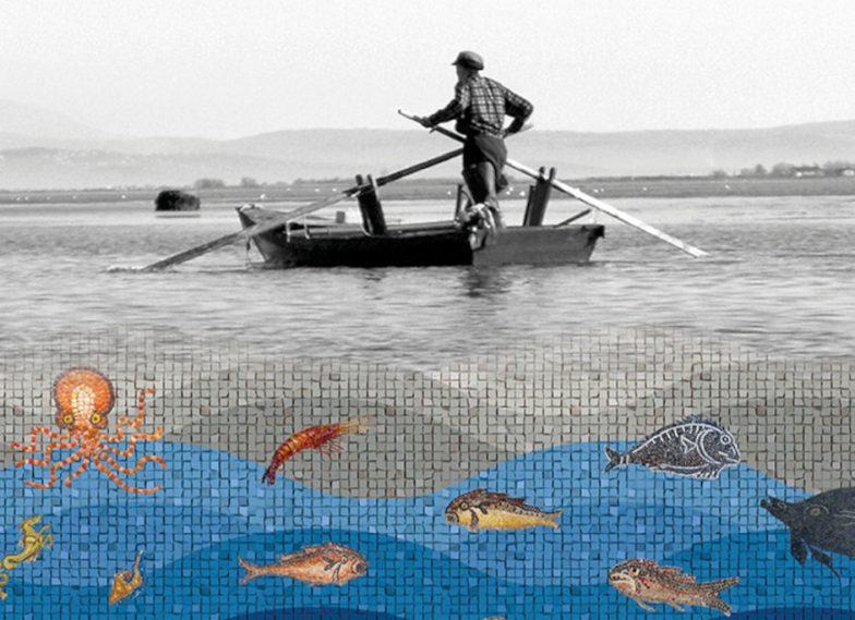 Un mare di risorse. Lo sfruttamento dell'ambiente marino nell'Alto Adriatico tra archeologia ed etnografia
